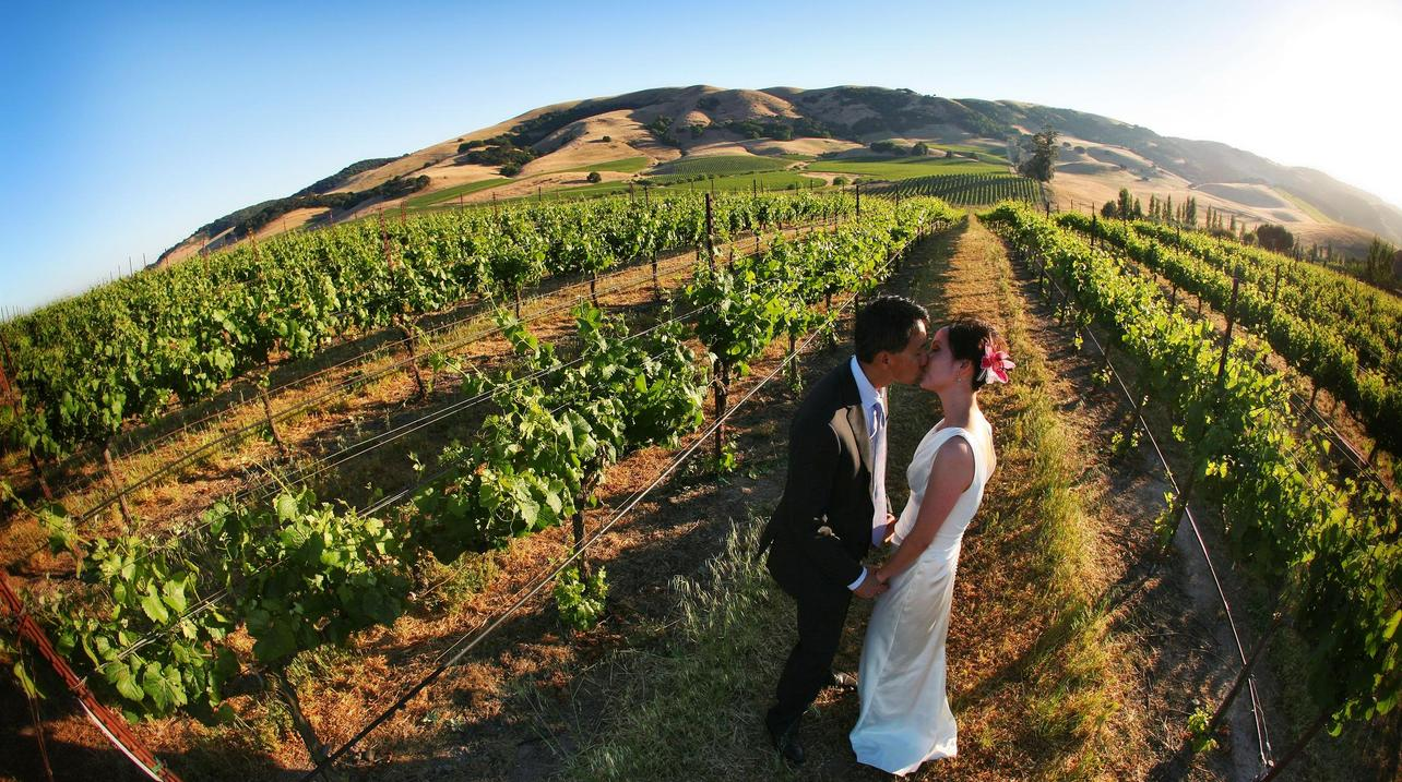 Winery Wedding Venues in Sonoma, CA